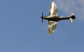 Обои полет, истребитель, аэродром, Spitfire, Mk XVI