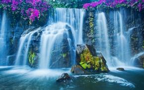Обои водопад, мох, цветы, камни