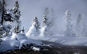 Картинка зима, снег, елки, сугробы