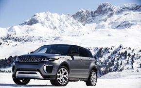 Обои гора, Evoque, snow, снег, склон, Land Rover, mountain, деревья, Range Rover, Autobiography, car