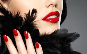 Картинка девушка, лицо, перья, помада, губы