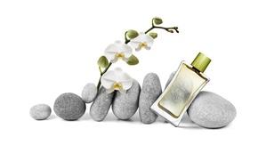 Картинка стекло, камни, бутылка, духи, орхидея, спа, парфюм