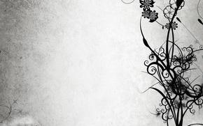 Картинка цветы, ветки, черный