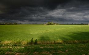 Картинка зелень, поле, небо, трава, деревья, тучи, пасмурно, домики, Нидерланды, Muiden