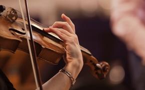 Картинка music, violin, symphony