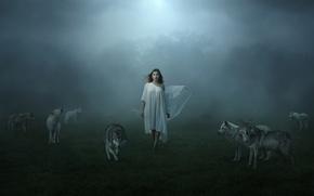 Картинка туман, девушка, волки