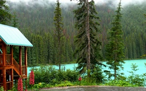 Картинка лес, деревья, озеро, дом, берег, Канада, Yoho National Park