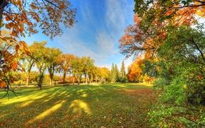 Обои парк, небо, деревья, тень, скамья, трава, осень