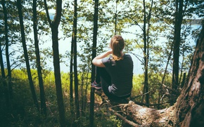 Картинка лес, девушка, деревья, пейзаж, природа, корни, река, обрыв, дерево, настроение, берег, красота