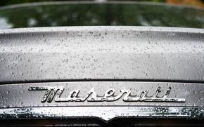 Картинка Maserati, Капли, Лого, Буквы, Мазерати, Шильдик