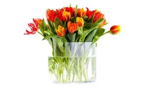 Картинка вода, цветы, букет, тюльпаны, ваза