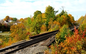 Картинка осень, лес, листва, рельсы, colors, forest, листопад, Autumn, leaves, fall
