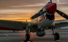 Картинка закат, истребитель, аэродром, P-40 Warhawk