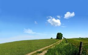 Обои дорога, зелень, поле, небо, природа