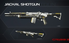 Картинка Crysis, gun, game, weapon, shotgun, Crysis 3, Texture, SCI Fi, CryEngine, Critek, official wallpaper, Jackal, …
