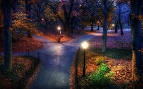 Картинка ночь, парк, дороги