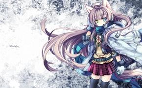 Картинка девушка, обои, аниме, шарф