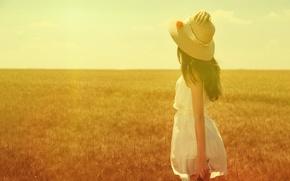 Картинка поле, лето, девушка, солнце, шляпка