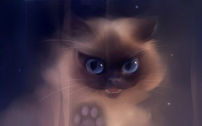 Обои кошка, взгляд, long time no see, apofiss, лапа, рисунок, клыки, зубы, художник