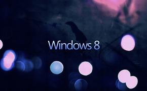 Картинка Dark, Windows, Eight