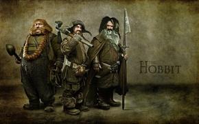 Обои the hobbit, гномы, хоббит, фильм