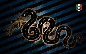 Картинка футбол, змея, Италия, эмблема, Милан, Italy, футбольный клуб, Нерадзурри, FC Internazionale, Nerazzurri, Milano, ФК Интер