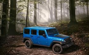 Картинка лес, джип, Wrangler, Jeep, 2015, вранглер