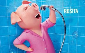 Картинка film, animated film, pig, Universal Pictures, Illumination Entertainment, Rosita, Sing, cinema movie