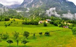 Обои лес, трава, облака, деревья, горы, дома, Словения, Slovenia, поляна.