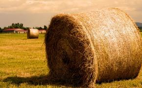 Картинка поле, Солома, сено, тюк