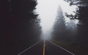 Картинка дорога, лес, природа, туман, дымка