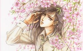 Картинка сакура, галстук, рубашка, парень, манга, цветение, длинные волосы, art, згляд, Mamiya Oki, Platonic Dance