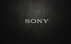 Картинка silver, logo, Sony
