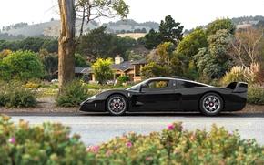 Картинка чёрный, Maserati, сад, суперкар, black, MC12