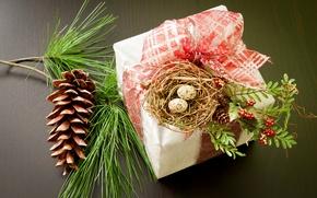 Картинка коробка, подарок, яйца, ветка, Новый Год, Рождество, гнездо, бант, шишка, Christmas, сосна, праздники, New Year, …