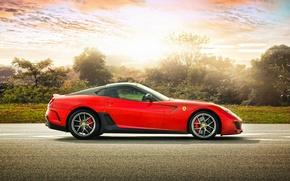 Картинка деревья, спорткар, феррари, Ferrari 599 GTO