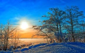Обои зима, снег, деревья, солнце, небо
