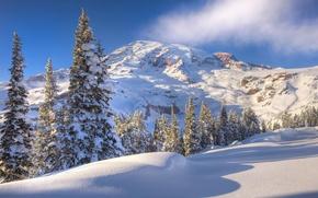 Картинка зима, небо, снег, деревья, гора, склон