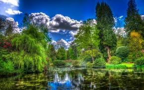 Картинка зелень, небо, вода, облака, деревья, река, HDR