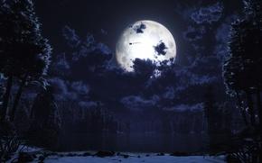 Картинка ночь, луна, санта