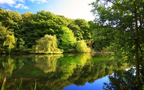 Картинка осень, деревья, природа, река