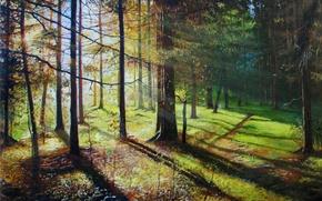Картинка солнце, лучи, деревья, пейзаж, картина, тени, живопись, тропинка, Луценко, солнечным днём в лесу