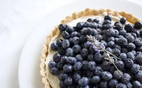 Обои тарталетка, цветы, сахар, лаванда, тарелка, черника, еда, ягода
