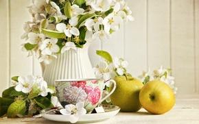 Картинка цветы, чай, яблоки, зеленые, чашка, кувшин, жасмин