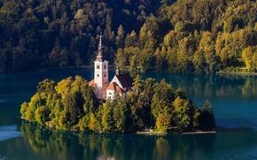 Картинка лес, горы, природа, остров, церковь, Словения, озеро Блед