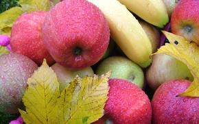 Картинка листья, капли, яблоки, бананы, фрукты