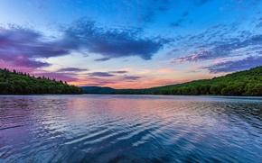 Картинка лес, озеро, рассвет, утро