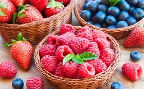 Обои ягоды, малина, черника, клубника, корзинка, fresh, berries