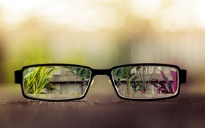 Обои листья, стол, забор, растения, очки, линзы, вазоны, clear vision