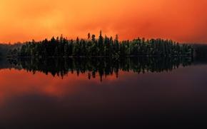 Картинка лес, озеро, отражение, Швеция, Sweden